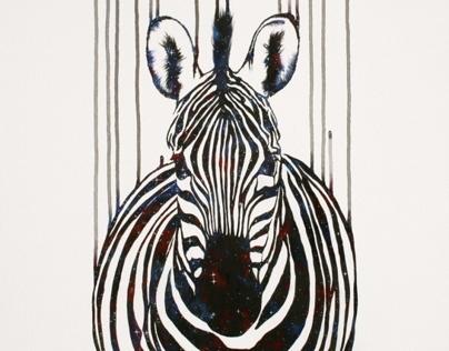 Celestial Zebra