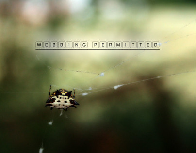 webbing permitted