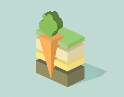 Carrot infography