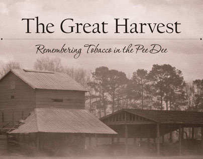 The Great Harvest