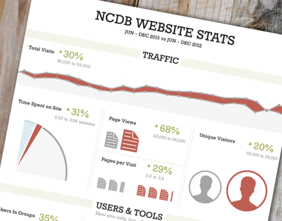 Website Stats Infographic