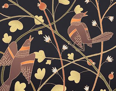 Oiseaux illustration