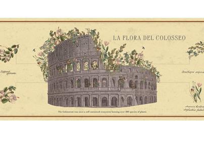 40 Days in Rome