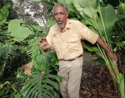 Florida Landscape Series   Plant Fertilizer