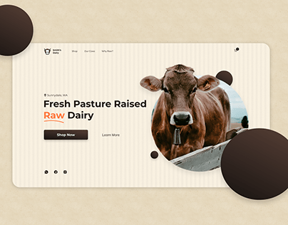 Dairy Cow Store Website Design - Landing page