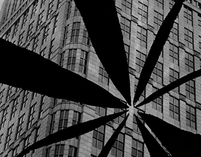 Detroit Expressed with Photograms