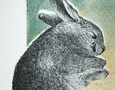 Color Lithography Rabbit Prints