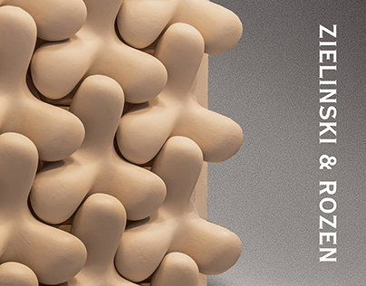 Zielinski & Rozen redesign concept