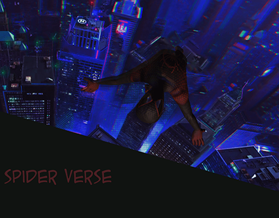 Spider - Verse Documentation