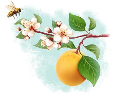 Orchard Beauty by Alexandra