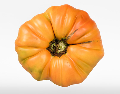 Amber Tomato