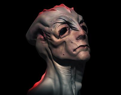 3D design sculpts