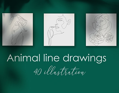 Animal line illustration