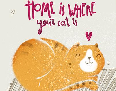 CATS | Summer digital illustrations