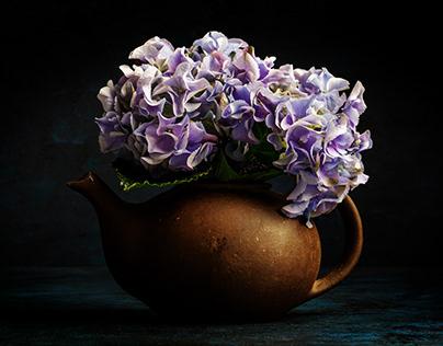 Hydrangeas in a clay jug