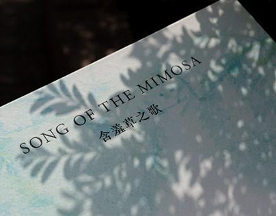 Song of the Mimosa, Tsz Pui