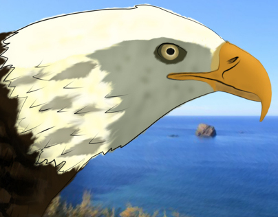 Águia (Eagle)