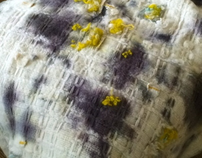 Moldy Blankets