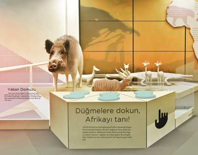 ITÜ Ufuk Güldemir Wild Life Museum