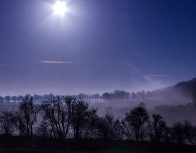 The morning Fog, Dec 2013, Mont Saint Eloi. France