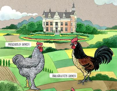 Information boards for Animal park Huizingen