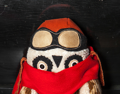 Aviator owl