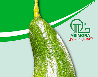 Pendón Abimgra Ltda.