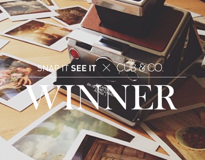 Snap It See It / Cub & Co. Giveaway