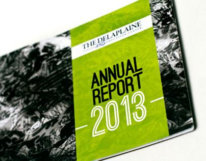 Annual Report Design   The Delaplaine Visual Arts