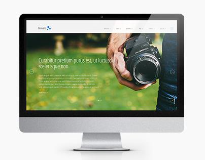 Themeforest.com theme.