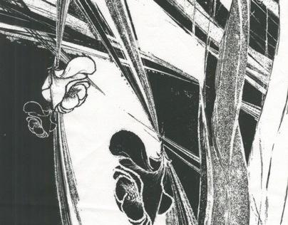 The Dance of Petals (black&white prints 2013)