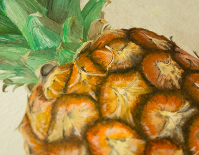 [Étude documentaire] Ananas