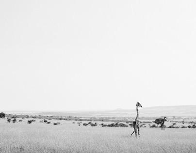 kenia landscape