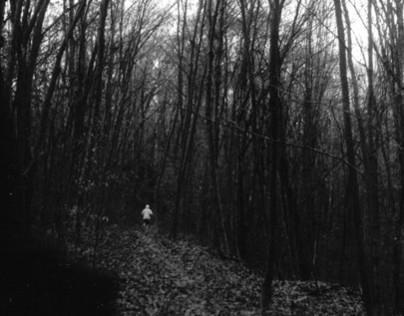 Trauma Series 2013 photography