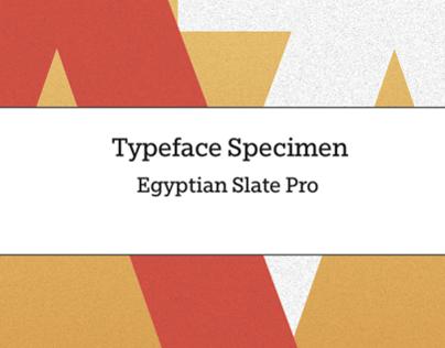 Egyptian Slate Type Specimen