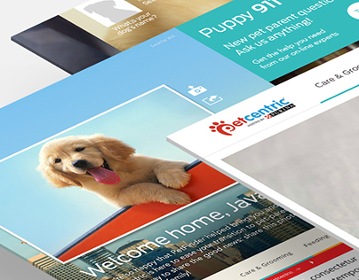 PURINA - We're Petcentric PITCH