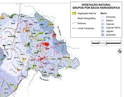 Mapeamento das Áreas Verdes de Campinas
