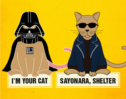 The amazing cats