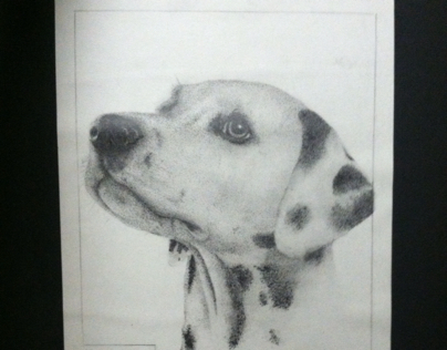 Stippling pencil drawing