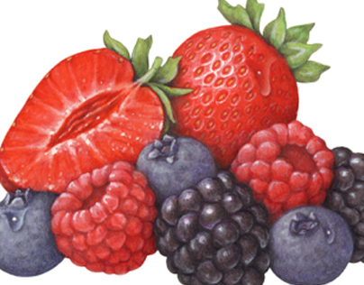 Berry Packaging Illustrations From Last 30Years