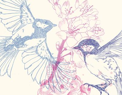 Birds, Cake & Flowers
