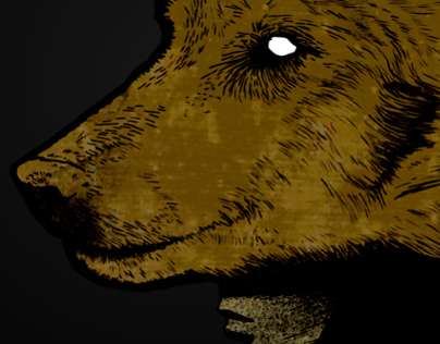 Wolfguy