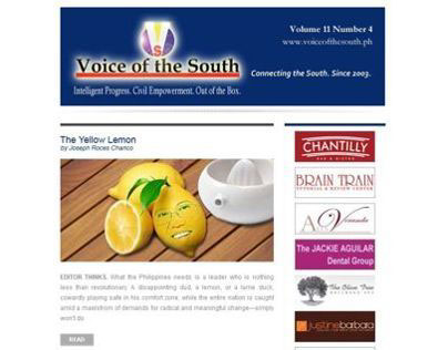Voice of the South Newspaper - Email Edition