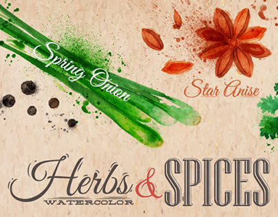 Herbs spices watercolor
