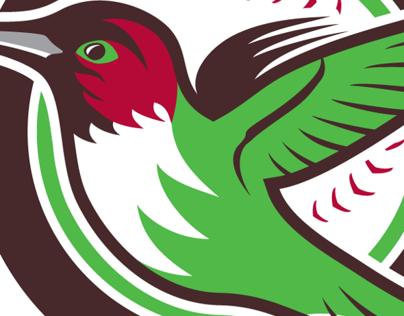Tucson Hummingbirds fantasy baseball team identity