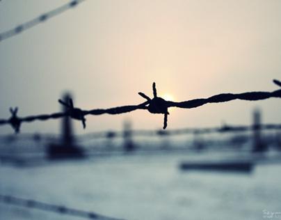 Concentration camp Auschwitz - Birkenau