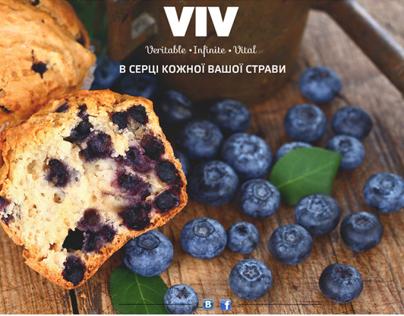 Project of website for brand VIV