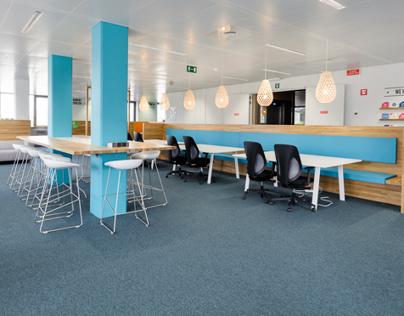 """""""Nest"""" office design"""