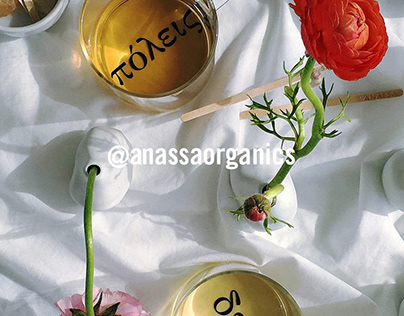 Anassa— Social Media Content Creation & Management