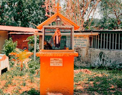 Venezuela in Marigold